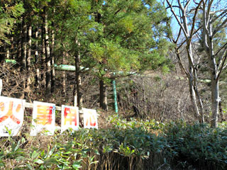 jouhukazawa19.jpg