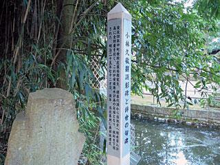 kobayashi25