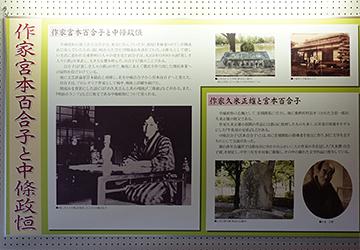 ↑展示パネル 作家宮本百合子と中條政恒。