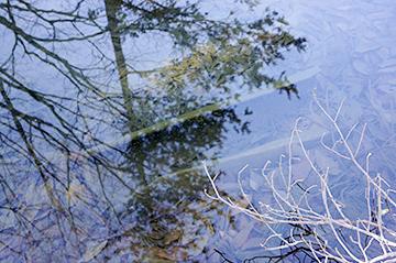 ↑水道として使われた木管の一部。