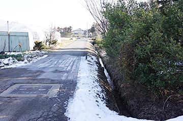 ↑清水池から流れる小川は、道沿いの側溝を流れていきます。