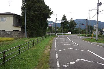 sinasakamoriya55