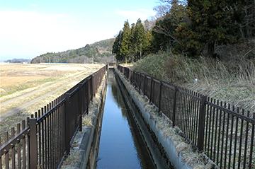 sinasakaumeda38