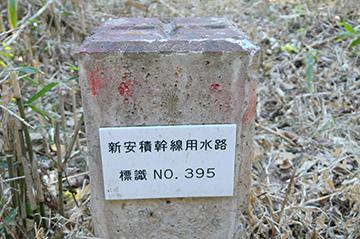sinasakaumeda49