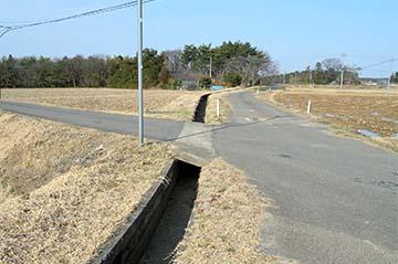 shinasakatoyonaga18