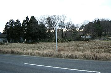 sinasakaniida213
