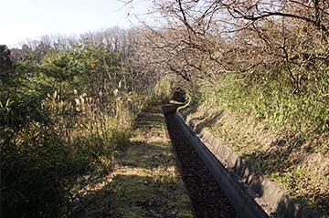 shinasakaokkyuu24