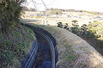 shinasakaokkyuu31