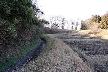 shinasakaokkyuu49
