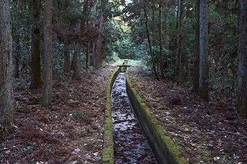 shinasakatoyonaga24